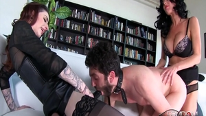Crazy hard ramming with sexy cougar Abbey Brooks